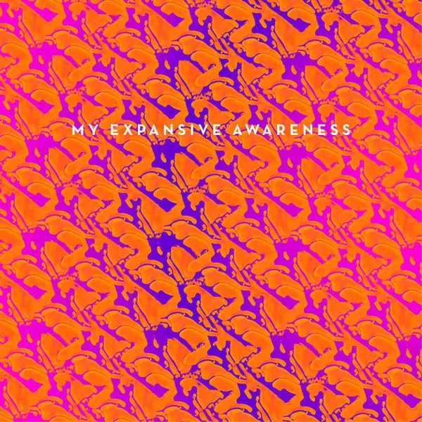 Portada de'Do You Wanna Be Rich? / I´m Dead' de My Expansive Awareness. Por: Pablo Vinuesa
