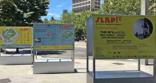 Carteles del Slap Festival 2016
