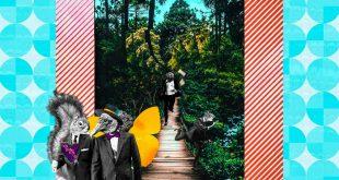 Tierra Vertical - El bosque se hizo canción