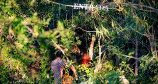 El Bosque Sonoro presenta Festival Canopea 2021. Foto de Javier Rosa.